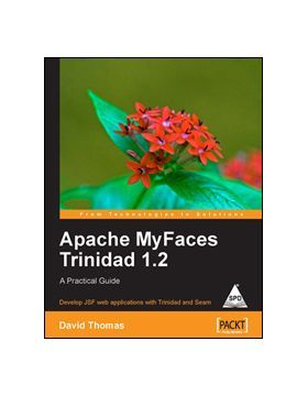Skinning the panels apache myfaces trinidad 1. 2: a practical guide.